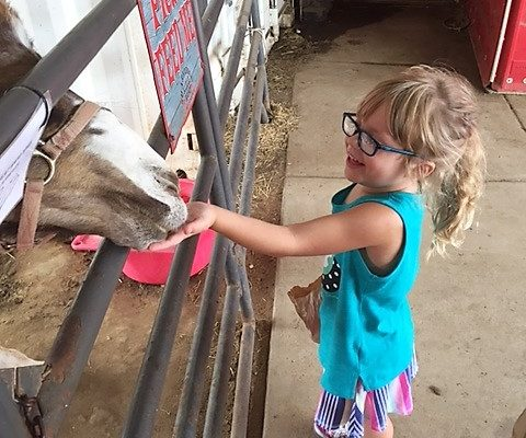 petting zoo in texas